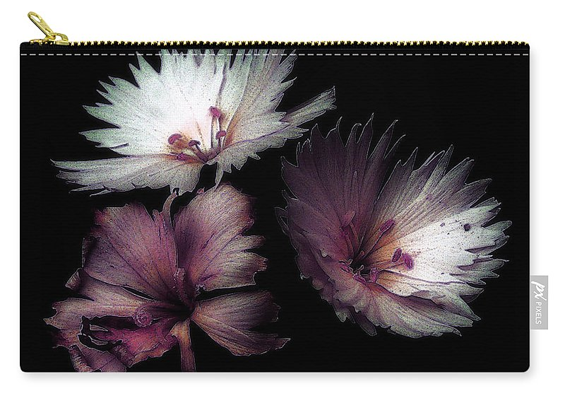 Dianthus Carry-all Pouch featuring the painting Maiden Mother Crone by RC DeWinter