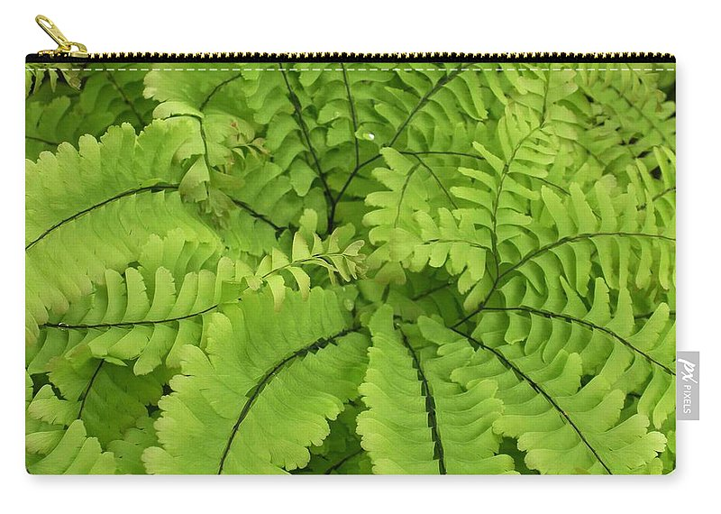 Fern Carry-all Pouch featuring the photograph Maidenhair by Nelson Strong