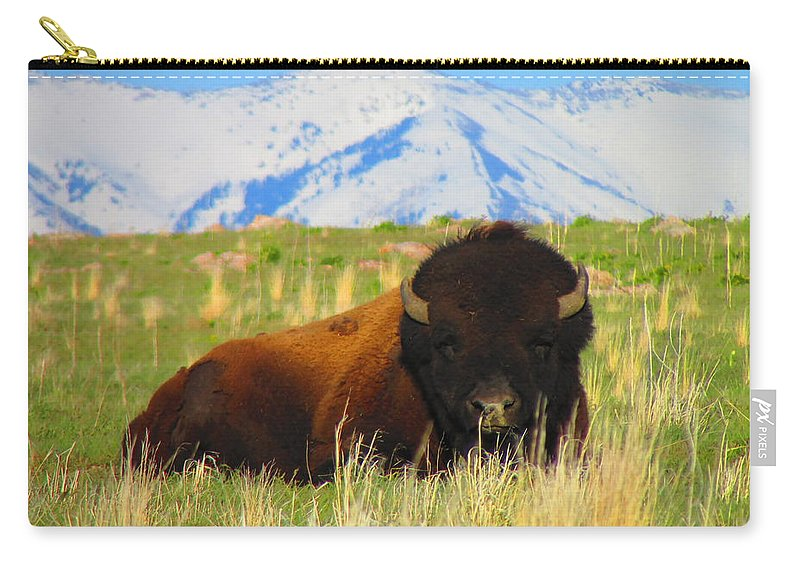 Buffalo Carry-all Pouch featuring the photograph Majestic Buffalo by Carol Dyer
