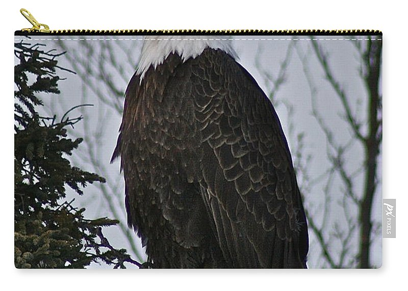 Eagle Carry-all Pouch featuring the photograph Majestic by Rick Monyahan