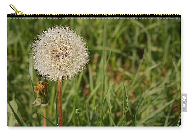 Dandelion Carry-all Pouch featuring the photograph Make A Wish by Amanda Gustafson