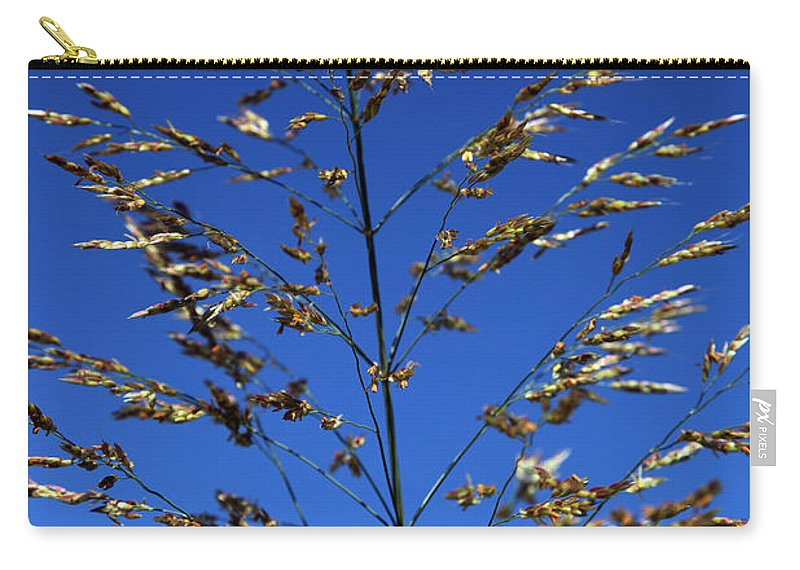 Nature Carry-all Pouch featuring the photograph Making A Sound by Amanda Barcon