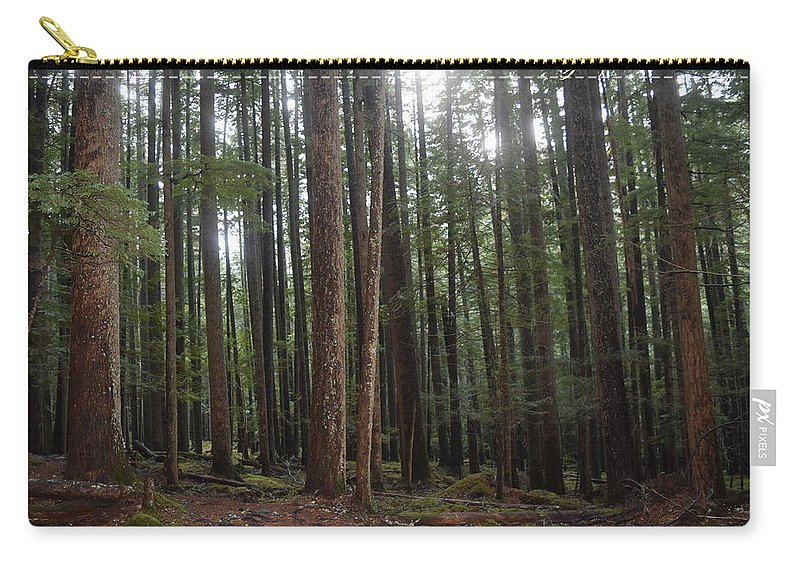 Woods Carry-all Pouch featuring the photograph Making A Stand by Thomas Sexton