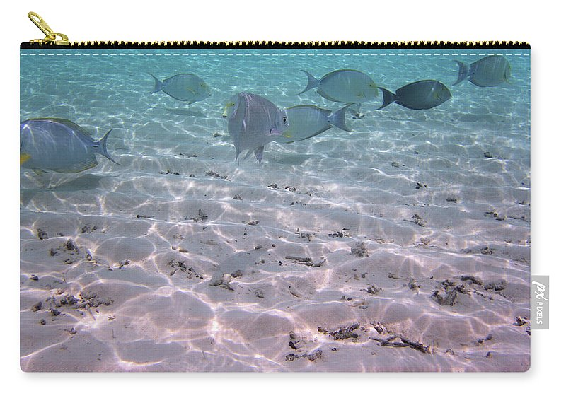 Turquoise Sea Carry-all Pouch featuring the photograph Maldives School Of Tropical Fish by Katrina Lau