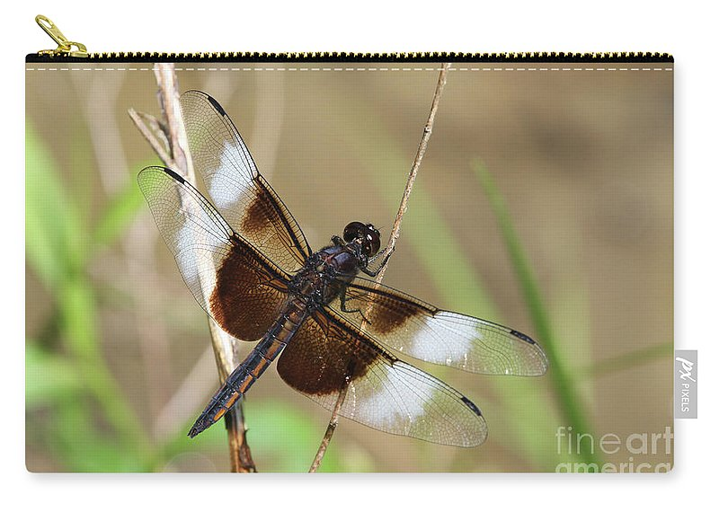 Dragonfly Carry-all Pouch featuring the photograph Male Widow Skimmer Dragonfly #3 by Judy Whitton