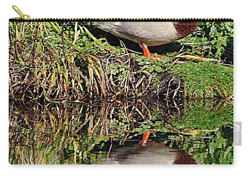 Mallard Carry-all Pouch featuring the photograph Mallard And Reflection by John Hughes