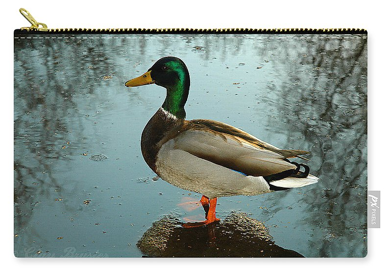 Clay Carry-all Pouch featuring the photograph Mallard by Clayton Bruster