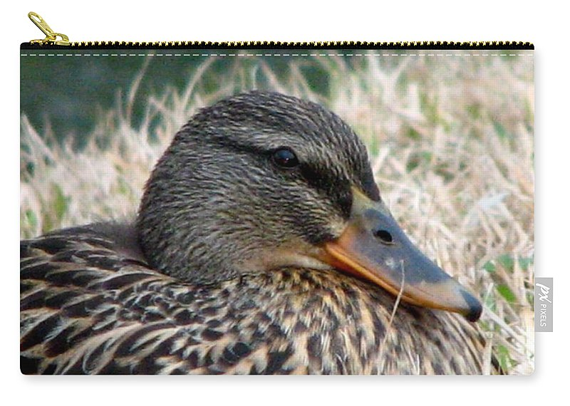 Duck Carry-all Pouch featuring the photograph Mallard Female 2 by J M Farris Photography