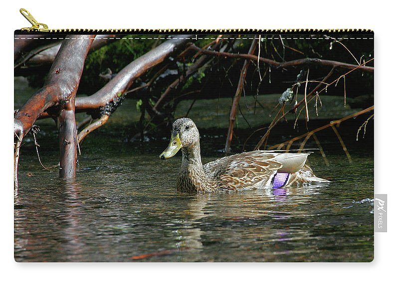 Mallard Female Carry-all Pouch featuring the photograph Mallard Female by Randall Ingalls