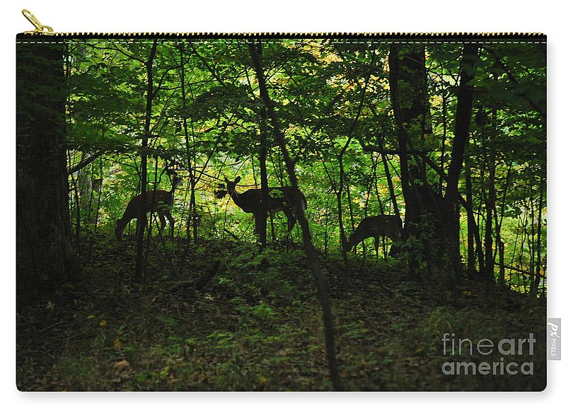 Deer Carry-all Pouch featuring the photograph Mamma And Twins by Michelle Hastings