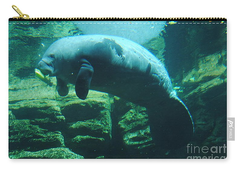 Manatee Carry-all Pouch featuring the photograph Manatee by Jost Houk