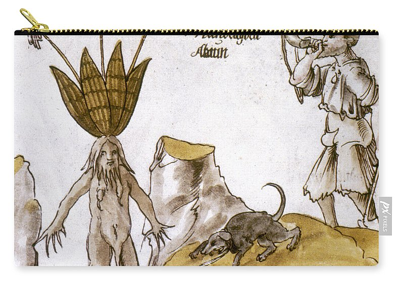 1500 Carry-all Pouch featuring the photograph Mandrake And Herbalist by Granger
