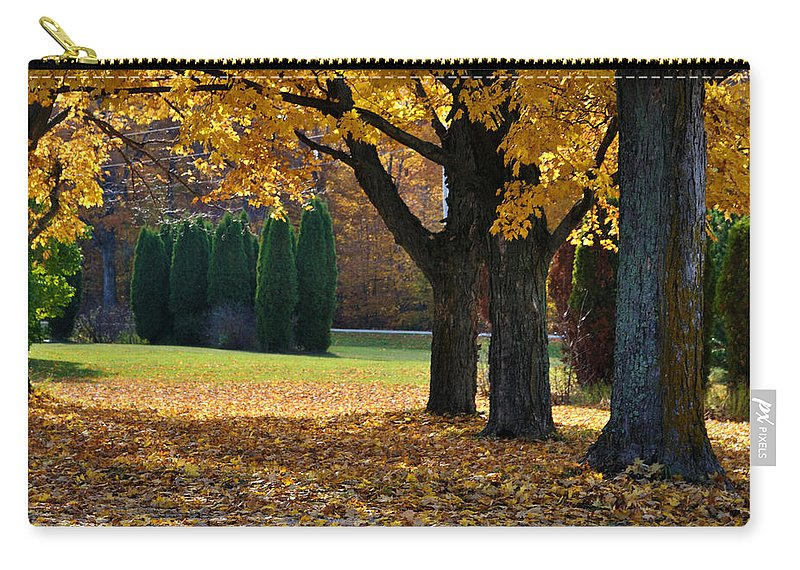Trees Carry-all Pouch featuring the photograph Maple And Arborvitae by Tim Nyberg