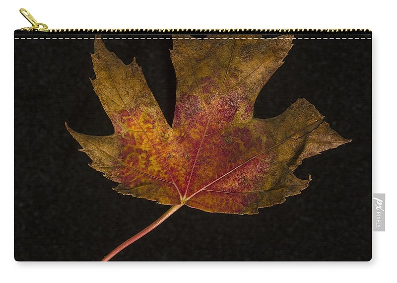 Leaf Carry-all Pouch featuring the photograph Maple Leaf by David Stone