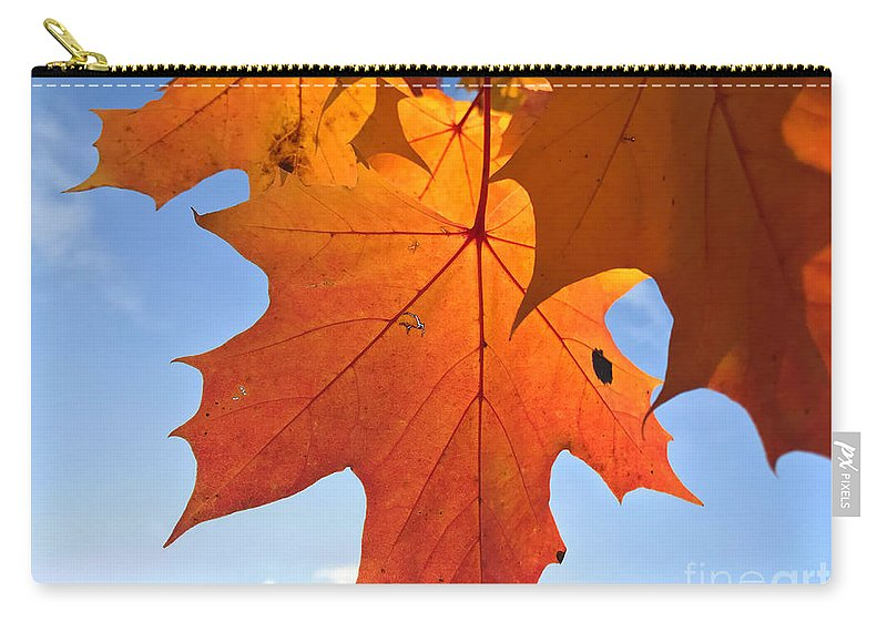 Abstract Carry-all Pouch featuring the photograph Maple Leaves by Mikael Holmgren