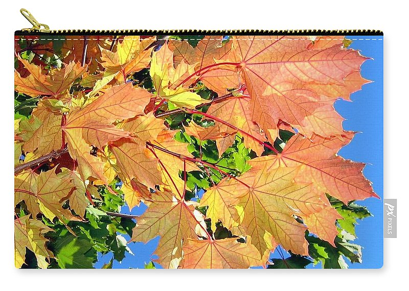 Autumn Carry-all Pouch featuring the photograph Maple Mania 1 by Will Borden