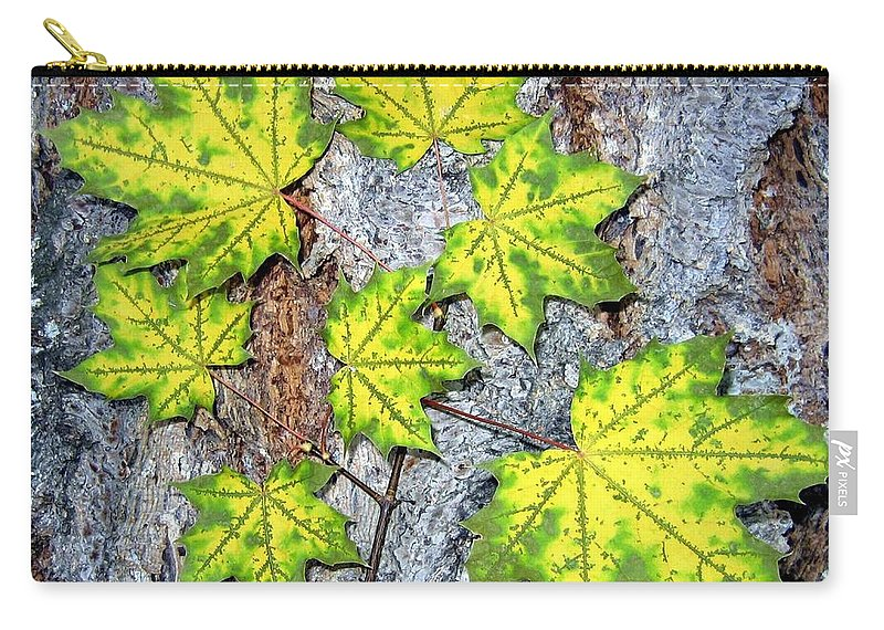 Autumn Carry-all Pouch featuring the photograph Maple Mania 12 by Will Borden