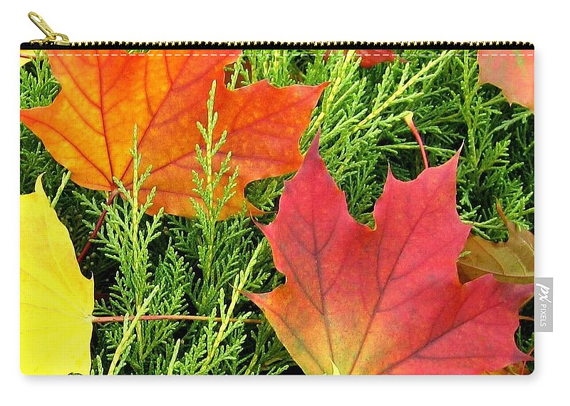 Autumn Carry-all Pouch featuring the photograph Maple Mania 5 by Will Borden