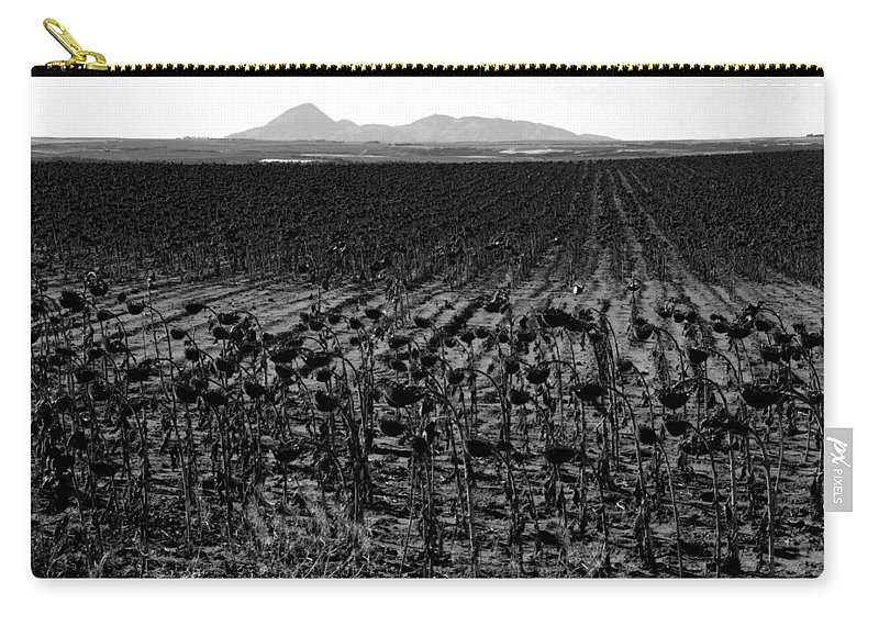 Sunflowers Carry-all Pouch featuring the photograph March Of The Sunflowers by David Lee Thompson