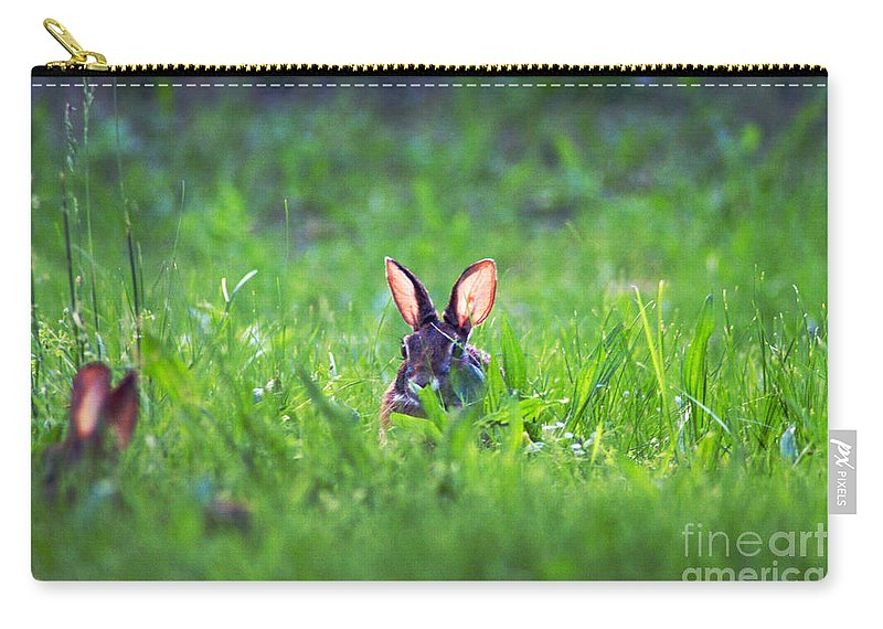 Clay Carry-all Pouch featuring the photograph Marco - Polo by Clayton Bruster