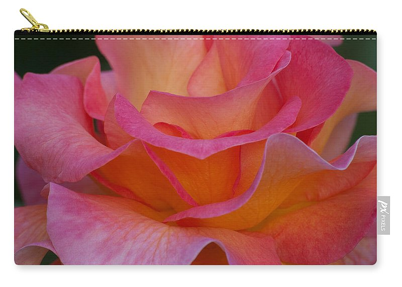 Floral Carry-all Pouch featuring the photograph Mardi Gras Rose Macro by Emerald Studio Photography