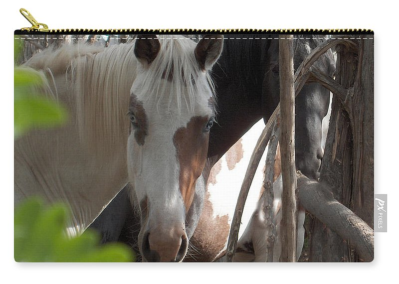 Horses Herd Mares Trees Ranch Farm Acreage Carry-all Pouch featuring the photograph Mares In Trees by Andrea Lawrence