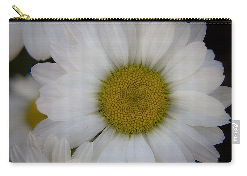 Marguerite Carry-all Pouch featuring the photograph Marguerite Daisies by Teresa Mucha