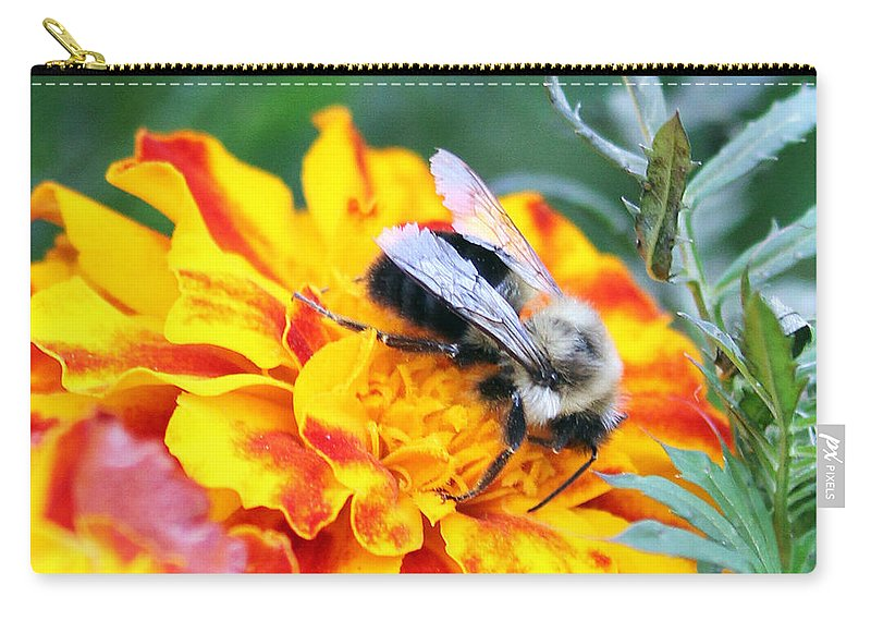 Bumble Bee Carry-all Pouch featuring the photograph Marigold And The Bee by Jennifer Robin