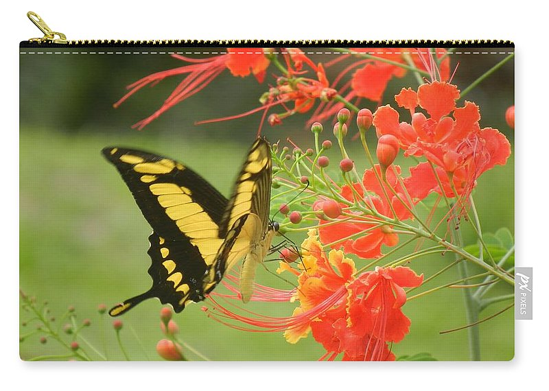 Butterfly Carry-all Pouch featuring the photograph Mariposa Amazonica by Rhonda Allbrandt