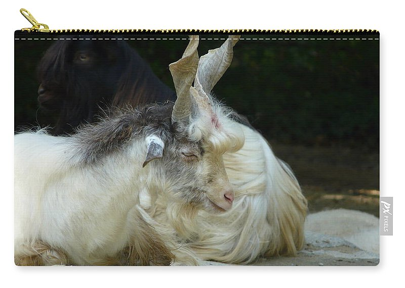 Goat Carry-all Pouch featuring the photograph Markhor by Valerie Ornstein