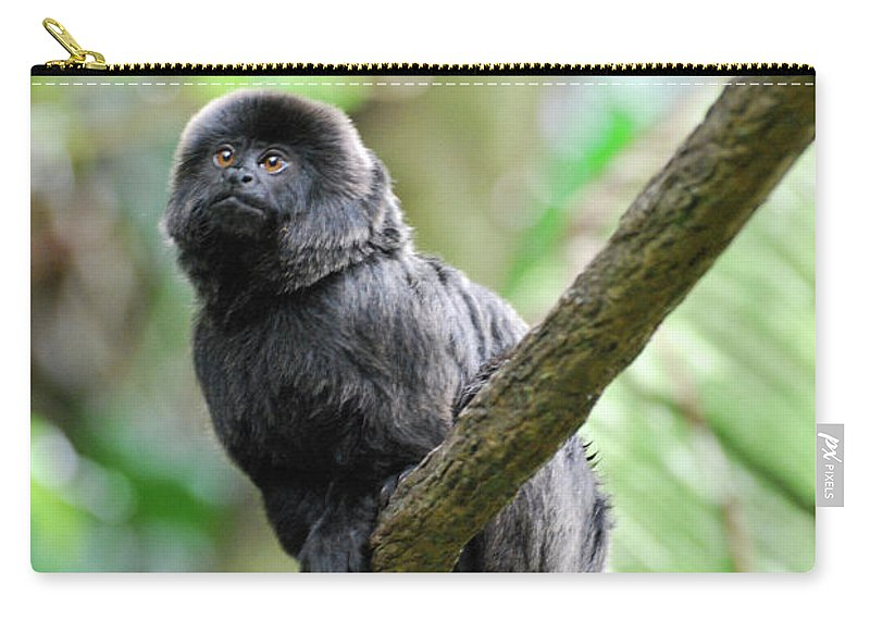 Goeldi Carry-all Pouch featuring the photograph Marmoset Sitting On A Vine by DejaVu Designs