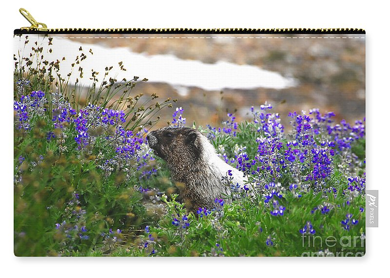 Marmot Carry-all Pouch featuring the photograph Marmot In The Wildflowers by David Lee Thompson