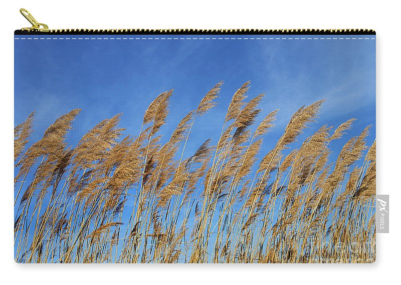 Nature Carry-all Pouch featuring the photograph Marsh In The Wind by Skip Willits