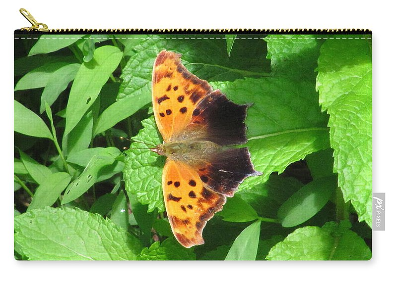 Maryland Eastern Comma Images Maryland Common Anglewing Butterfly Images Prints Maryland Butterfly Images Eastern Comma Prints Common Anglewing Photograph Forest Life Biodiversity Forest Ecology Entomology Nature Unique Species Black And Orange Butterfly Leaf Winged Butterfly Images Butterfly On Spearmint Leaves Carry-all Pouch featuring the photograph Maryland Eastern Comma by Joshua Bales