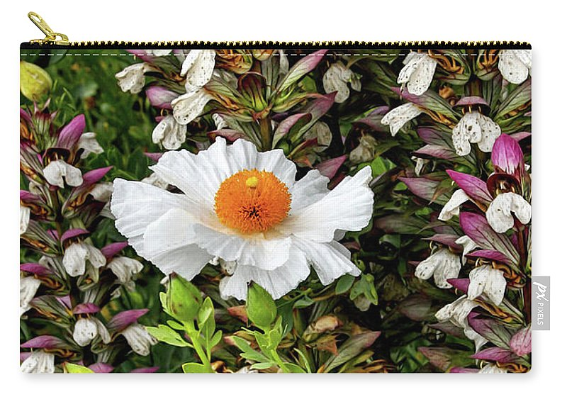 Gabriele Pomykaj Carry-all Pouch featuring the photograph Matilija Poppies by Gabriele Pomykaj