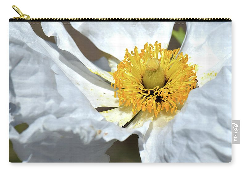 Macro Carry-all Pouch featuring the photograph Matilija Poppy-macro by Becky Grassl