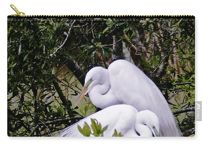 Bird Carry-all Pouch featuring the photograph Mating Season by Phill Doherty