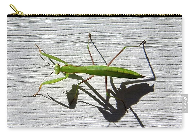 Mantis Carry-all Pouch featuring the photograph Me And My Shadow by Will Borden