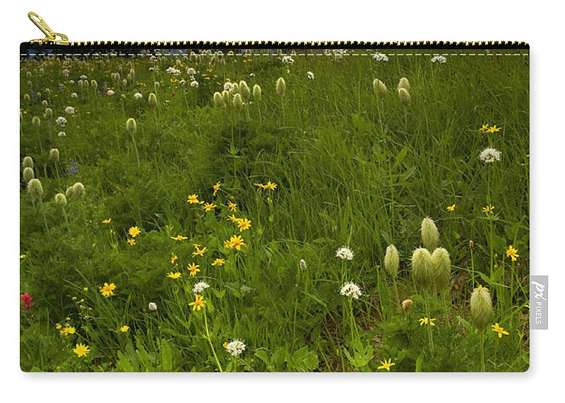 Rainier Carry-all Pouch featuring the photograph Meadow Beneath The Storm by Mike Dawson
