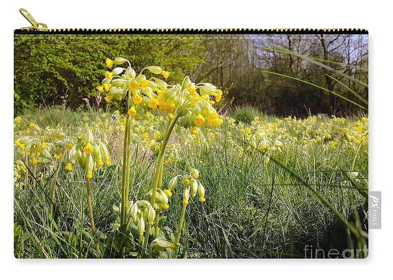 Cowslip Carry-all Pouch featuring the photograph Meadow Cowslip by John Chatterley