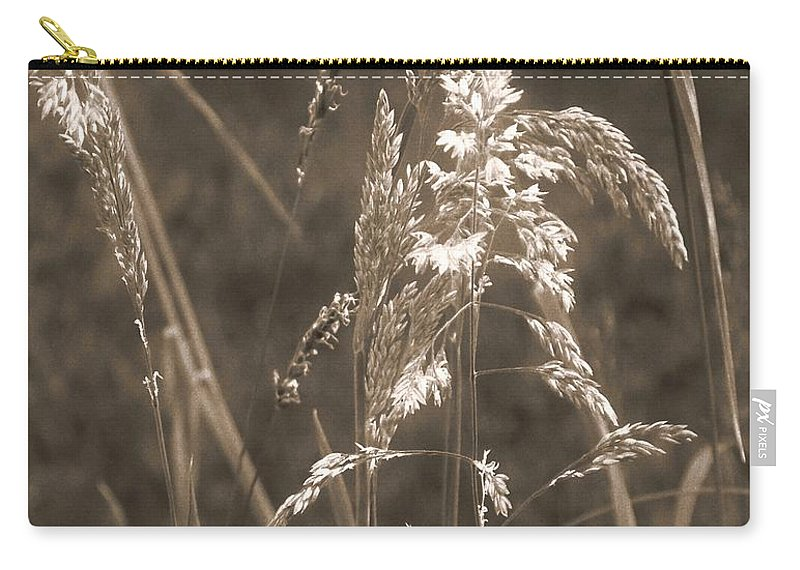 Connecticut Carry-all Pouch featuring the photograph Meadow Grass In Sepia by RC DeWinter