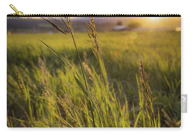 Meadow Light Carry-all Pouch featuring the photograph Meadow Light by Chad Dutson