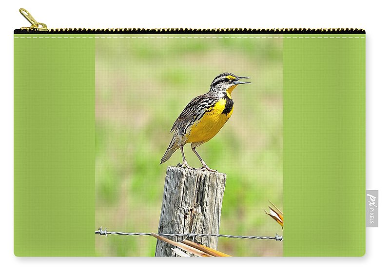 Meadowlark Carry-all Pouch featuring the photograph Meadowlark 7 by Amy Spear