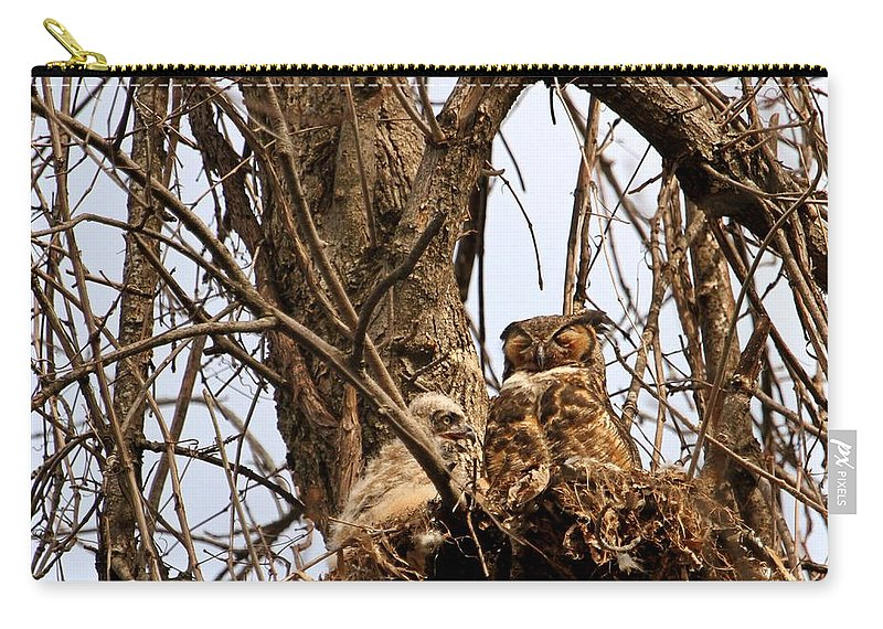 Owl Decor Carry-all Pouch featuring the photograph Meditative Momma by Heather King