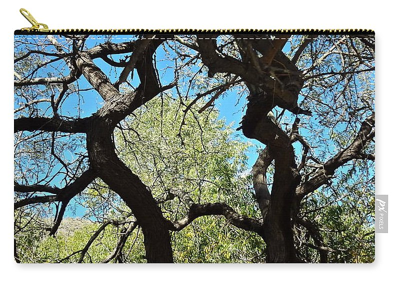 Landscape Carry-all Pouch featuring the photograph Mesquite Window by Bonnie See