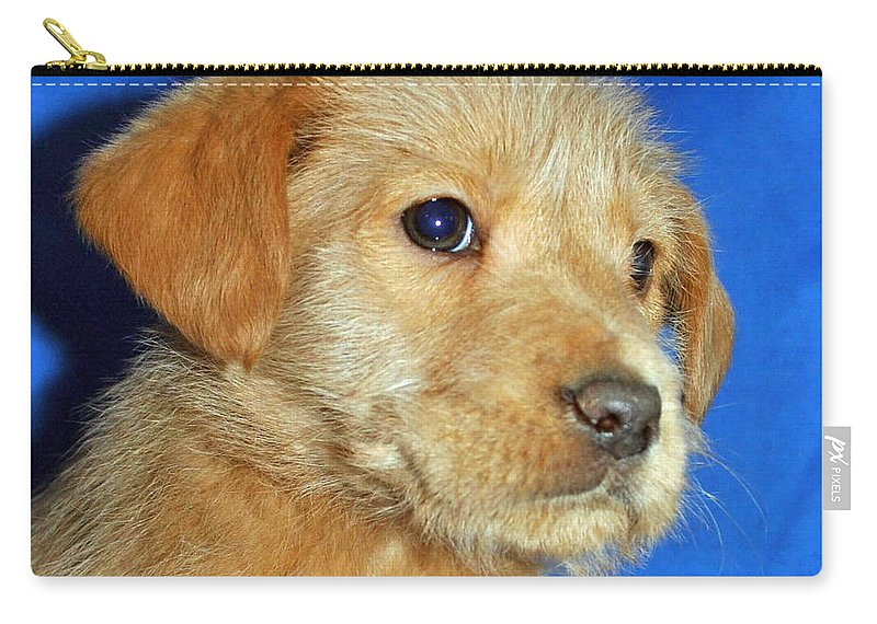 Dog Carry-all Pouch featuring the photograph Michael Portrait by Eric Liller