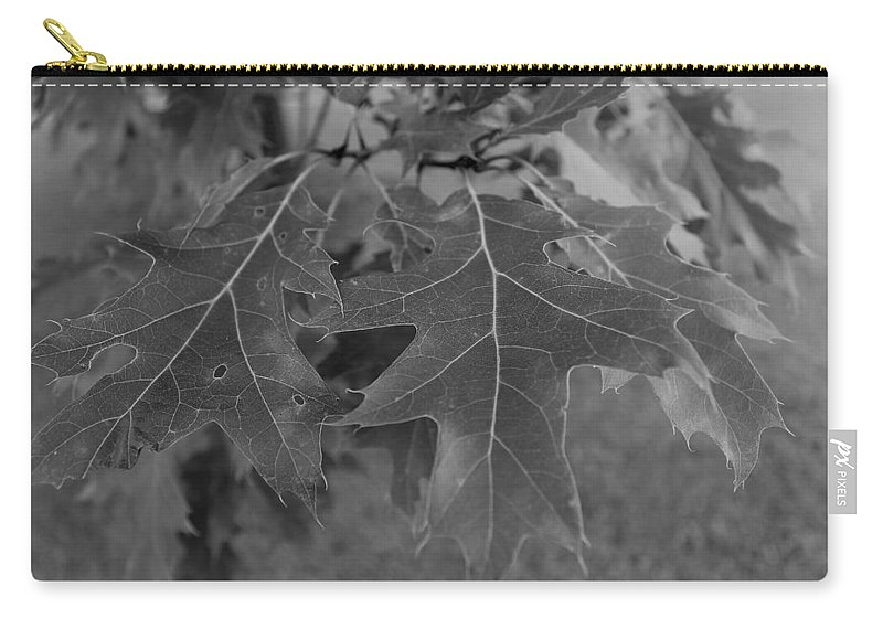Carry-all Pouch featuring the photograph Mighty Oak by John Bichler