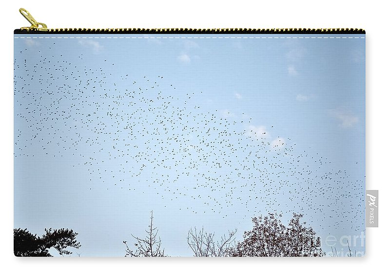 Birds Carry-all Pouch featuring the photograph Migrating Birds by Jeramey Lende