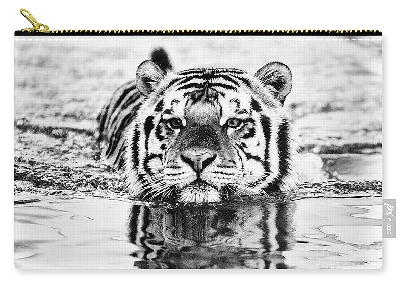 Tiger Carry-all Pouch featuring the photograph Big Mike by Scott Pellegrin