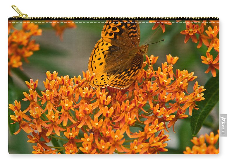 Milkweed Carry-all Pouch featuring the photograph Milkweed And A Frittalary by Douglas Barnett